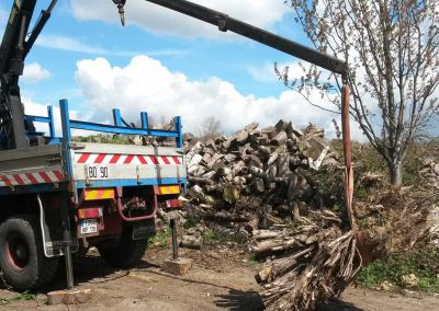 Waste Wood Removal by Crane