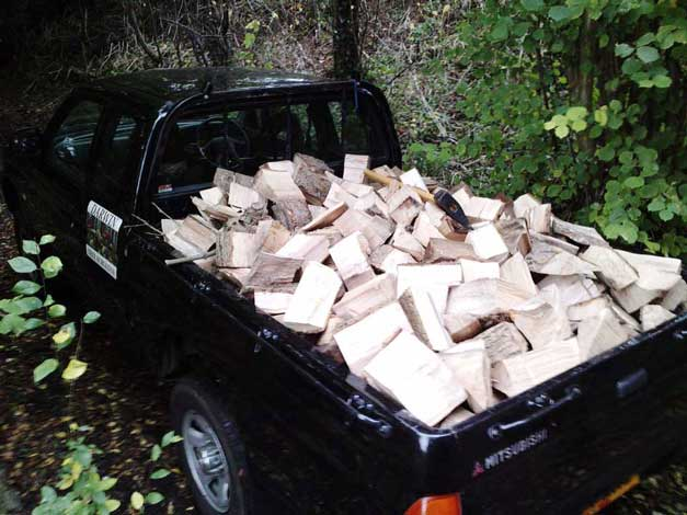 Darwin Tree Services delivering a load of firewood logs