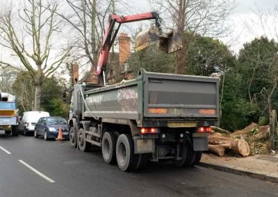 Darwin Tree Services carrying out site clearance in Camberwell