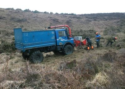 Darwin Tree Services doing forestry work and site clearance in Wareham Forest